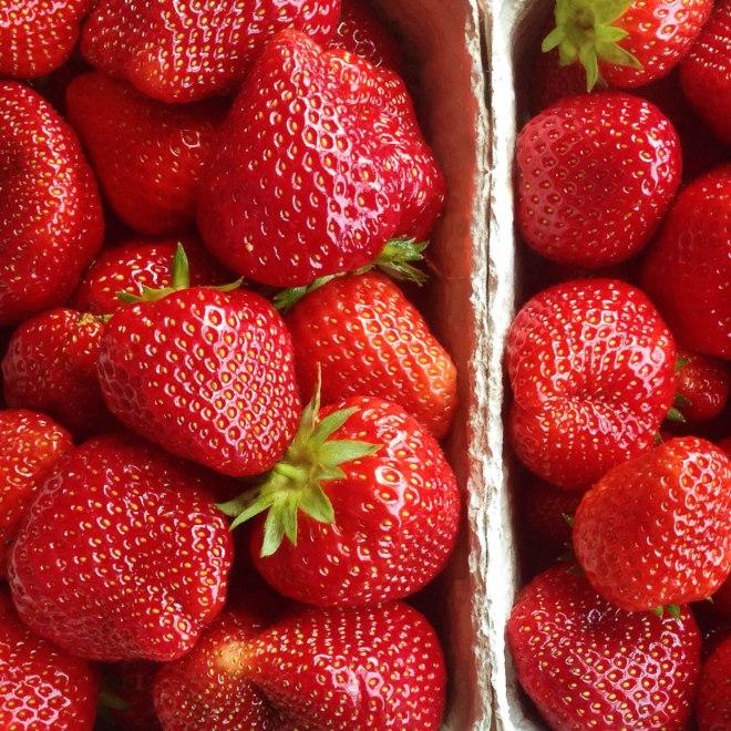 Erdbeeren1-2